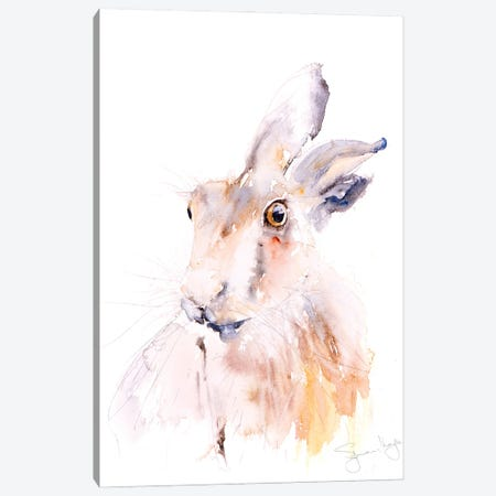 Hare IV Canvas Print #SYK63} by Syman Kaye Art Print