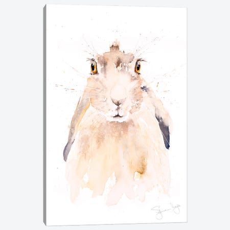 Harry Hare Canvas Print #SYK65} by Syman Kaye Canvas Wall Art