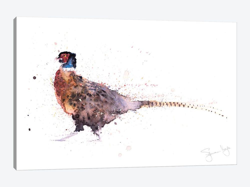 Hen Picked Pheasant II by Syman Kaye 1-piece Art Print