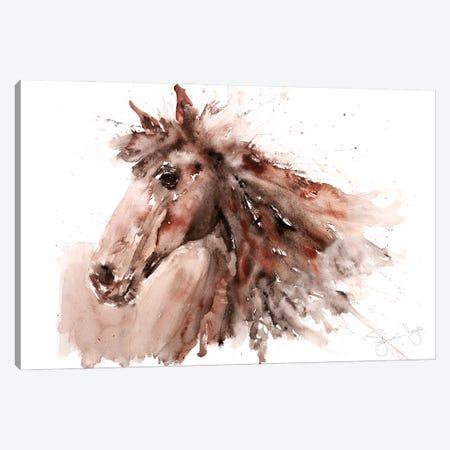 Horse V Canvas Print #SYK71} by Syman Kaye Canvas Wall Art