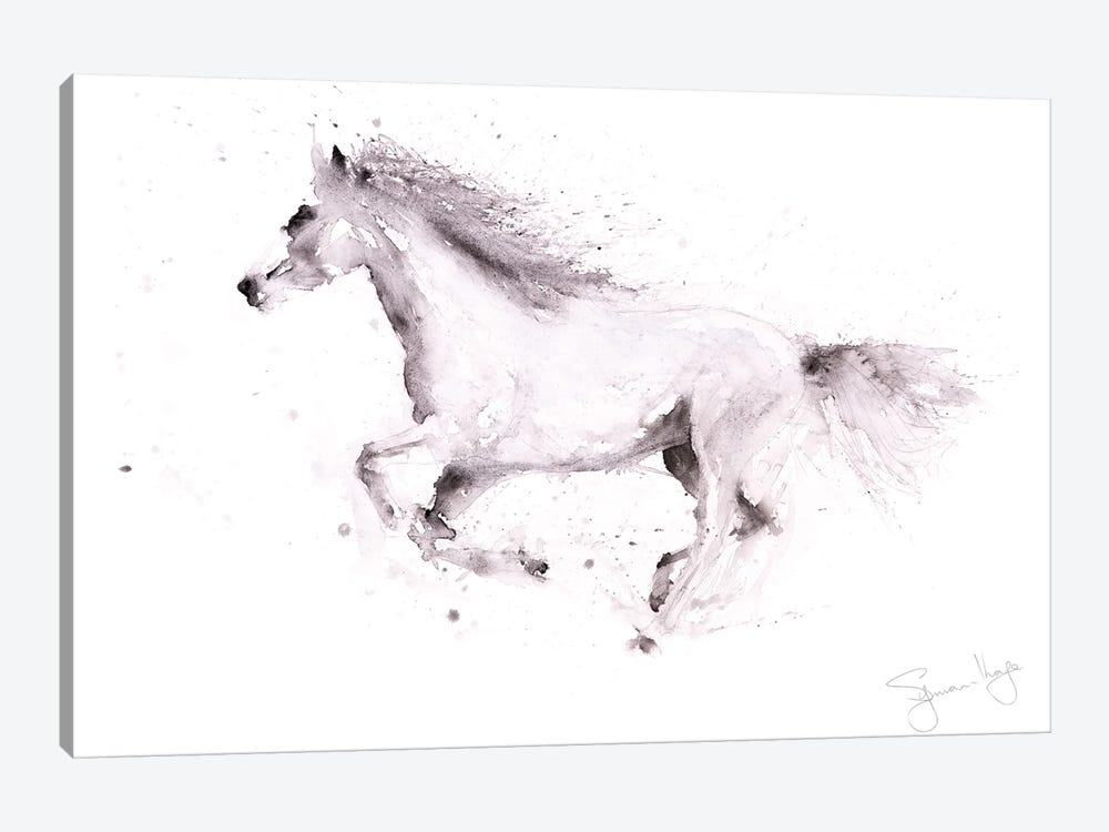 Horse White Horse Galloping by Syman Kaye 1-piece Canvas Print