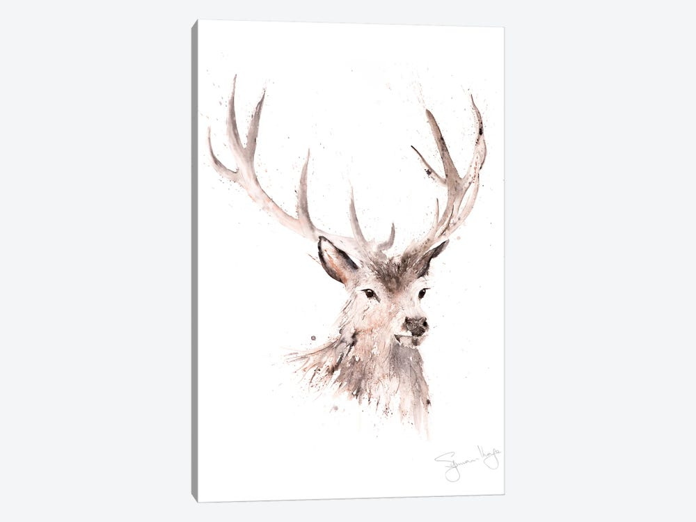 Just A Boy Stag by Syman Kaye 1-piece Canvas Print
