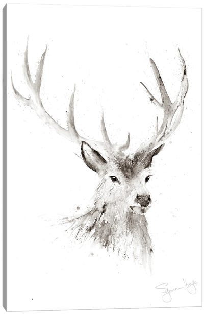 Just A Boy Stag II Canvas Art Print