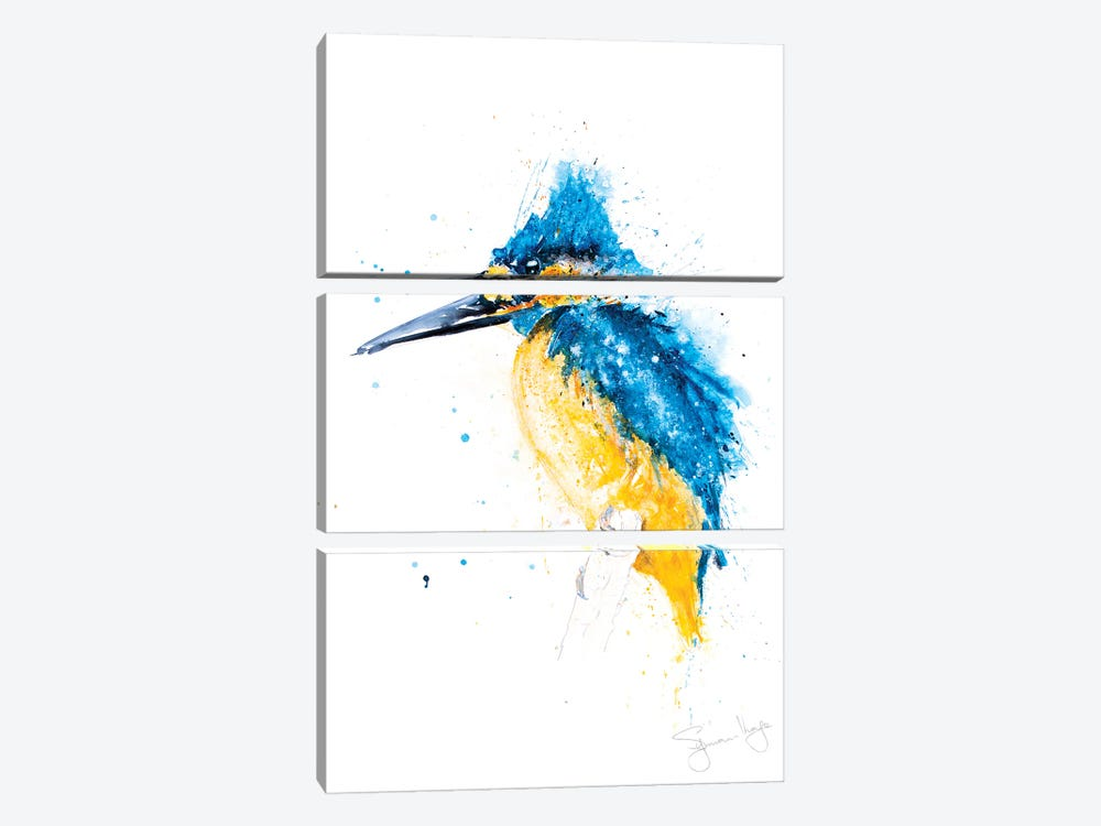 Kingfisher by Syman Kaye 3-piece Canvas Wall Art