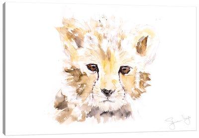 Mini Cheetah I Canvas Art Print