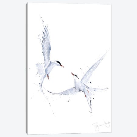 Arctic Angles Arctic Tern I Canvas Print #SYK8} by Syman Kaye Canvas Wall Art
