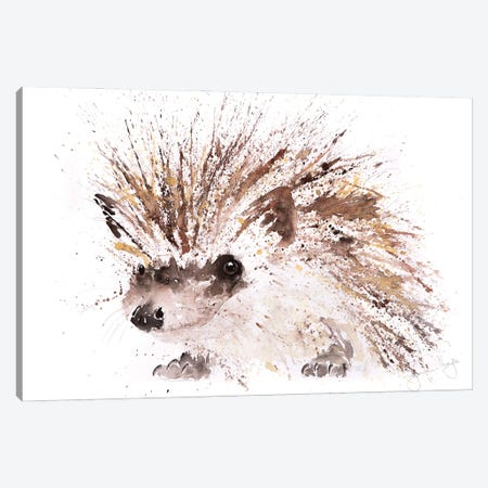 Mini Hedgehog Canvas Print #SYK90} by Syman Kaye Canvas Artwork