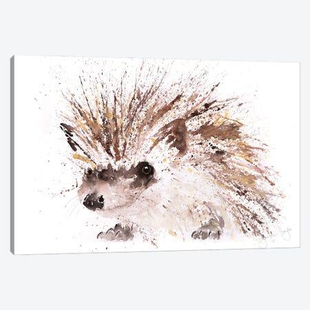 Mini Hedgehog Canvas Print #SYK90} by Syman Kaye Canvas Artwork