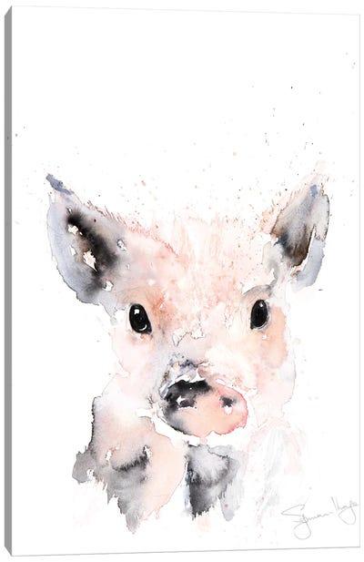 Mini Pig I Canvas Art Print