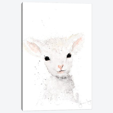 Mini Sheep I Canvas Print #SYK95} by Syman Kaye Canvas Print