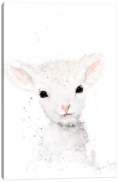 Mini Sheep I Canvas Art Print