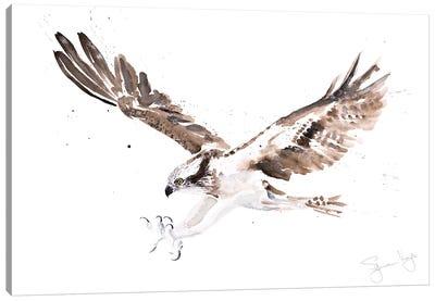 Osprey I Canvas Art Print