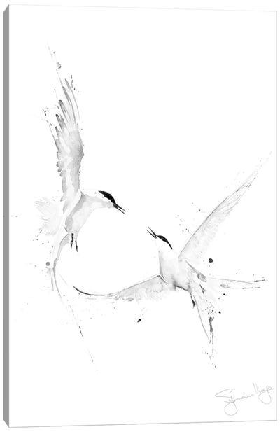 Arctic Angles Arctic Tern II Black And White Canvas Art Print