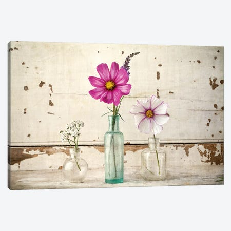 Cosmos Vases Canvas Print #SYM15} by Symposium Design Canvas Art Print