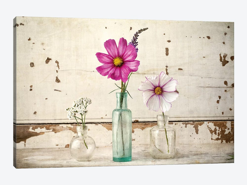 Cosmos Vases by Symposium Design 1-piece Canvas Artwork