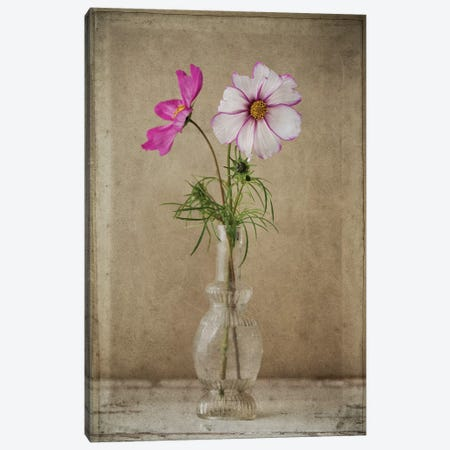 Two Cosmos Vase Canvas Print #SYM2} by Symposium Design Canvas Art