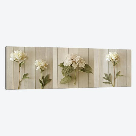 Two Peonies Triptych Canvas Print Set #SYM3HSET001} by Symposium Design Canvas Artwork