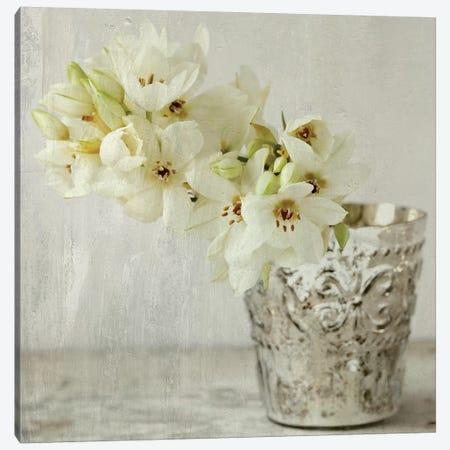Silver Vase Canvas Print #SYM40} by Symposium Design Art Print