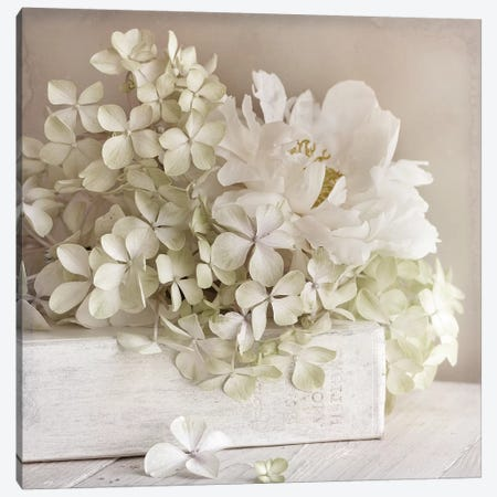 White Flower Book Canvas Print #SYM53} by Symposium Design Canvas Wall Art