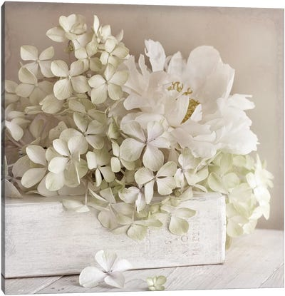 White Flower Book Canvas Art Print