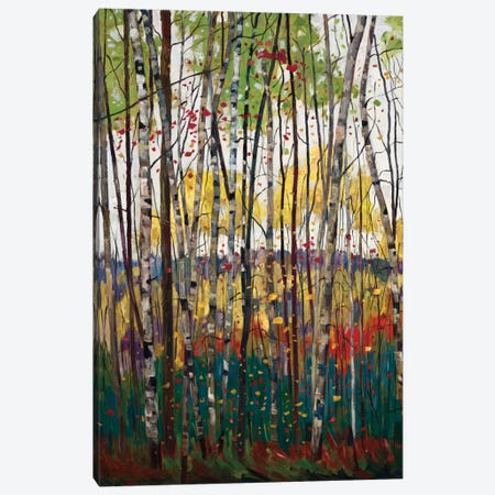 Voile De Montogne Canvas Print #SYT14} by Graham Forsythe Canvas Wall Art