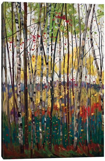 Voile De Montogne Canvas Art Print