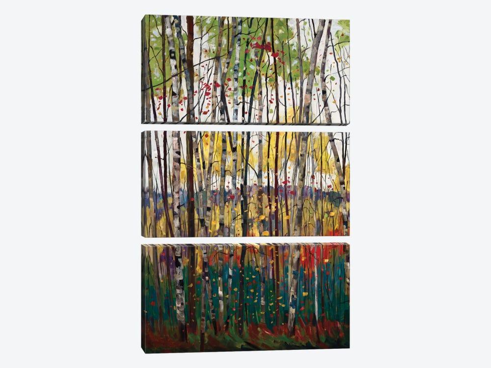 Voile De Montogne by Graham Forsythe 3-piece Canvas Art