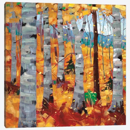 Border View I Canvas Print #SYT17} by Graham Forsythe Canvas Art