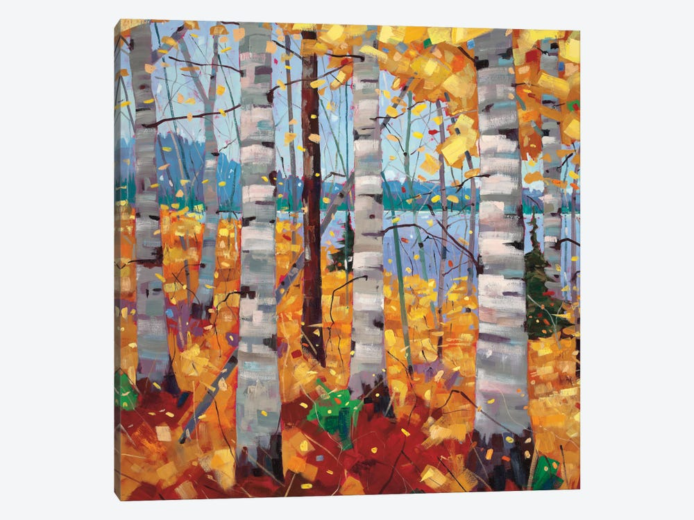 Border View II by Graham Forsythe 1-piece Canvas Artwork