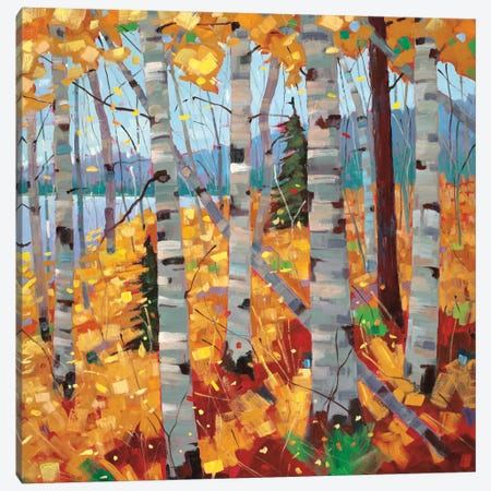Border View III Canvas Print #SYT19} by Graham Forsythe Canvas Print