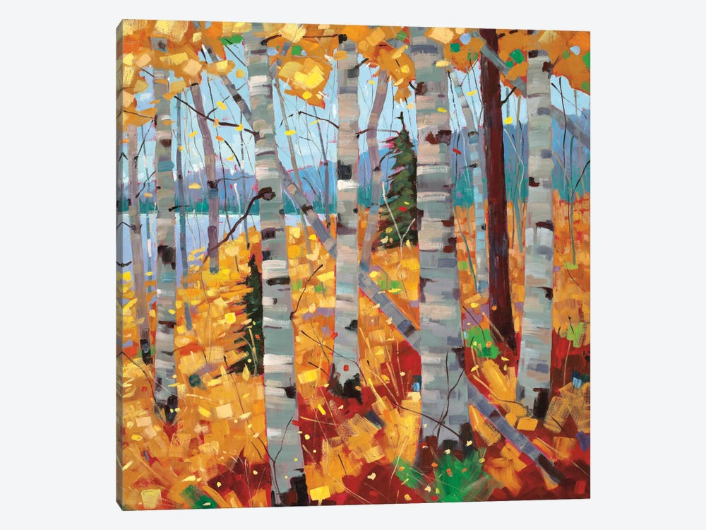 Border View III by Graham Forsythe 1-piece Canvas Print