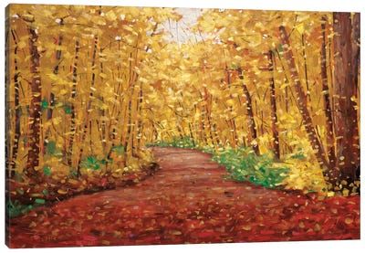 Autumn Dream Canvas Print #SYT1