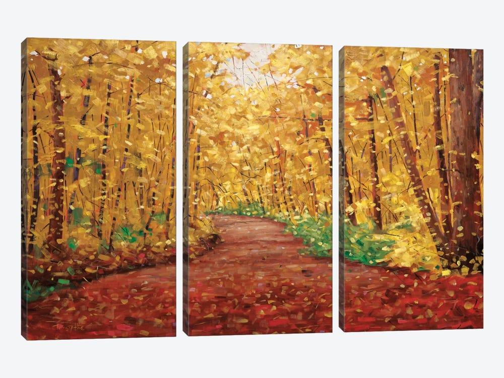Autumn Dream by Graham Forsythe 3-piece Canvas Print