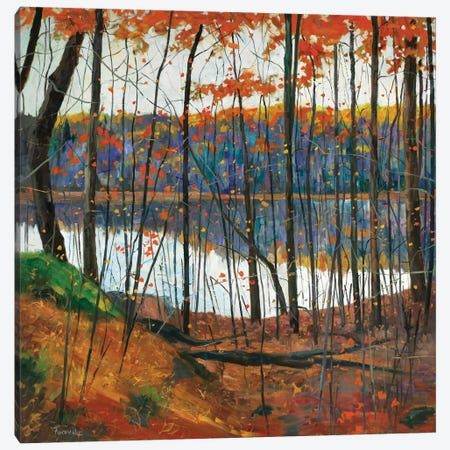 Hidden City Canvas Print #SYT6} by Graham Forsythe Canvas Art Print
