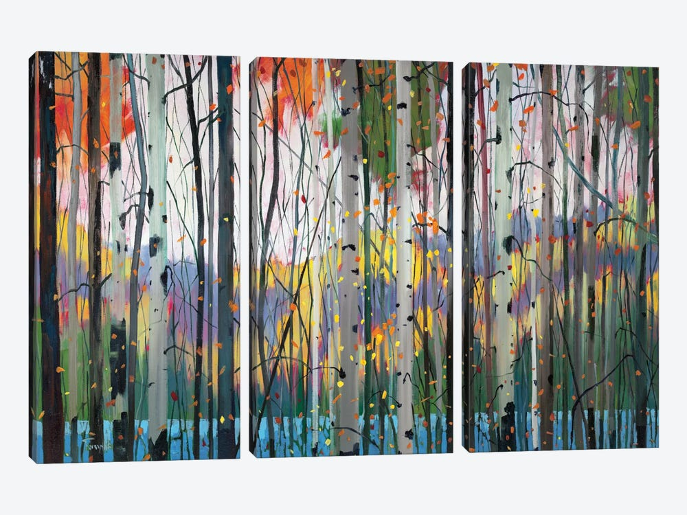 Lone Ranger by Graham Forsythe 3-piece Canvas Print