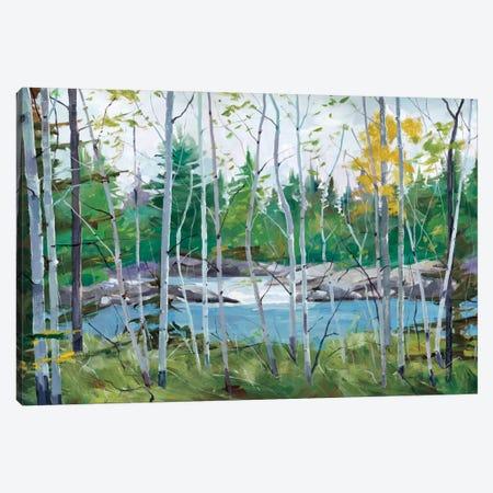 Oxtounge Rapids Canvas Print #SYT9} by Graham Forsythe Canvas Wall Art