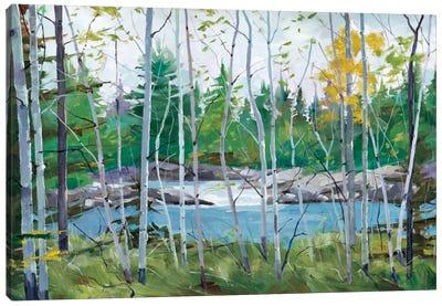 Oxtounge Rapids Canvas Art Print