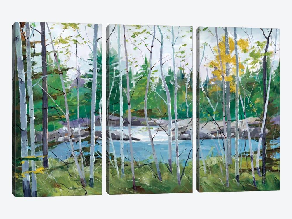 Oxtounge Rapids by Graham Forsythe 3-piece Canvas Print