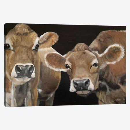 Hello There Cows Canvas Print #SZI2} by Suzi Reman Canvas Art Print