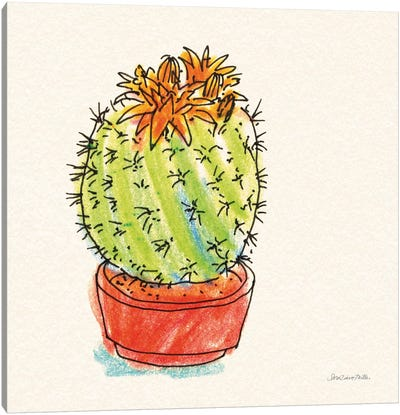 Cacti Garden II Canvas Art Print