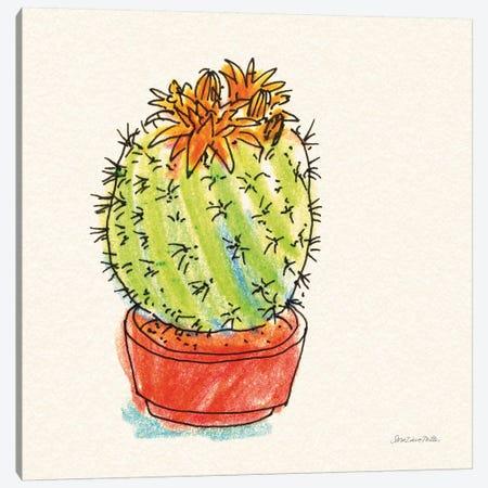 Cacti Garden II Canvas Print #SZM10} by Sara Zieve Miller Canvas Wall Art