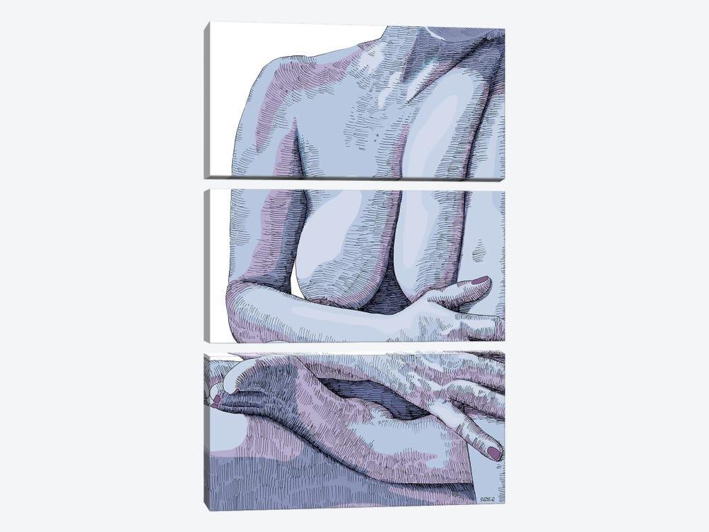 Comfort by Suzie-Q 3-piece Canvas Print