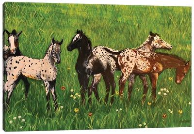 Seeing Spots Canvas Art Print