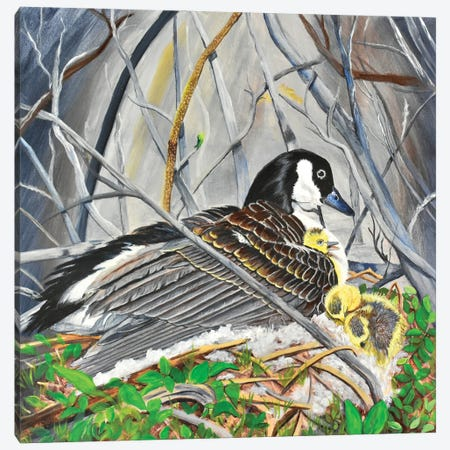 Goose With Goslings Canvas Print #SZS112} by SueZan Stutts Canvas Artwork