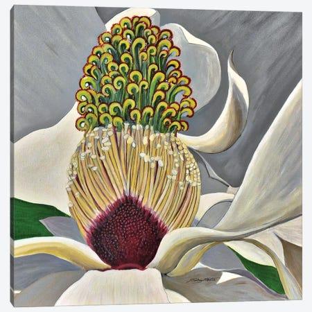The Great Magnolia Canvas Print #SZS122} by SueZan Stutts Canvas Print