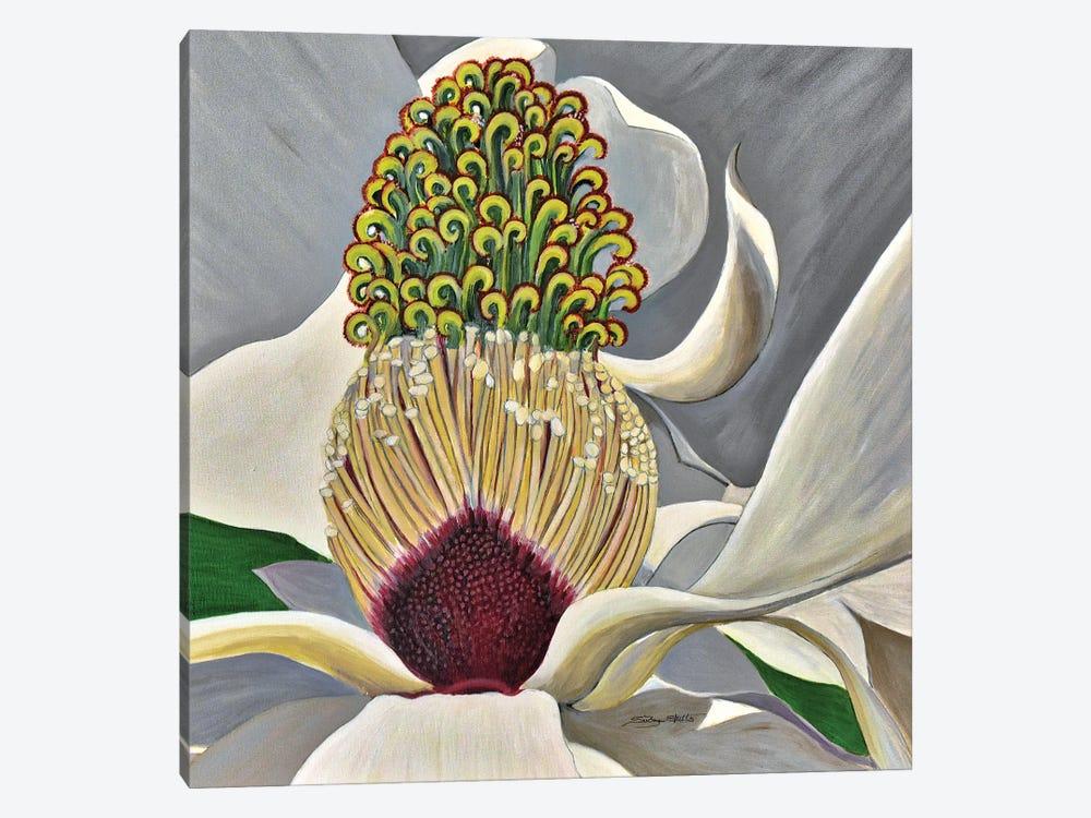 The Great Magnolia by SueZan Stutts 1-piece Canvas Art