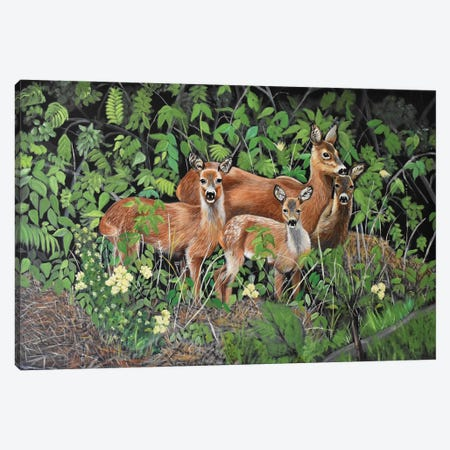 Forest Family Canvas Print #SZS13} by SueZan Stutts Canvas Artwork