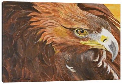 Golden Eagle I Canvas Art Print