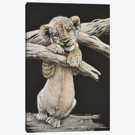 Lion Cub Canvas Print #SZS18} by SueZan Stutts Canvas Artwork