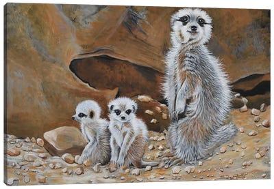 Meerkat Family Canvas Art Print